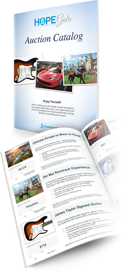 Silent Auction Catalog Template | Charity Auction Catalog Template