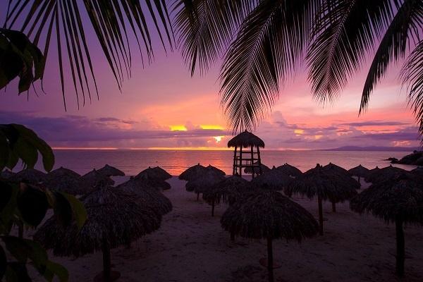 tropics email 600px.jpg